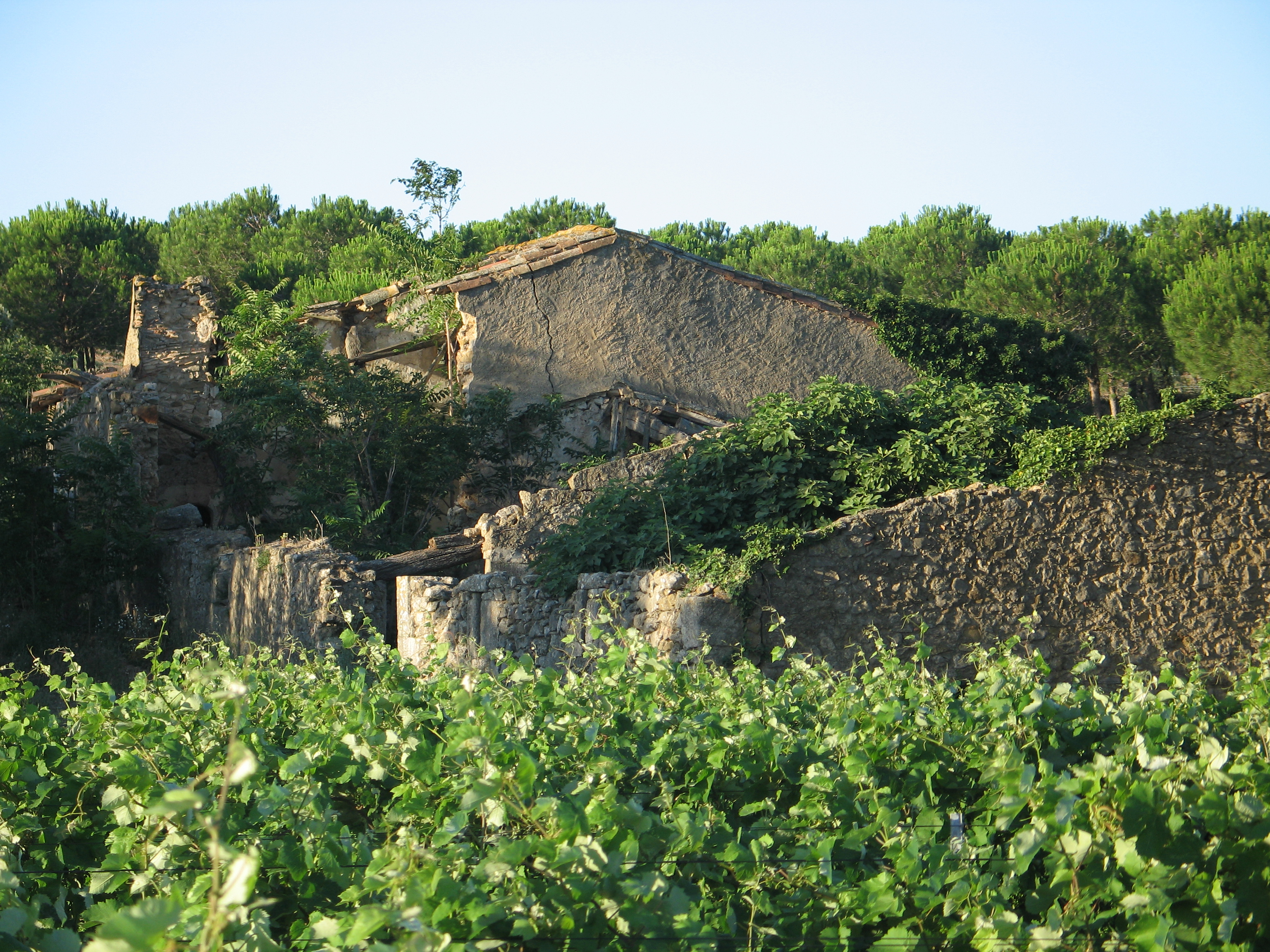Ruines Bugadelles 1